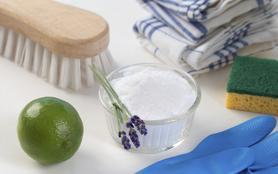 Cleaners, les experts du ménage