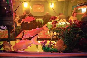 Restaurant Pho Tai