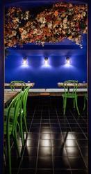 Restaurant Zola