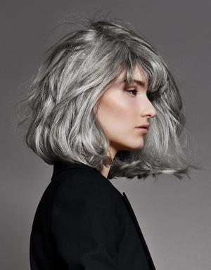 coloration cheveux gris julypaulaviola blog. Black Bedroom Furniture Sets. Home Design Ideas