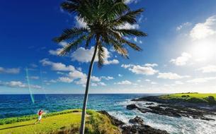 Aux Bahamas, greens sur fonds turquoise
