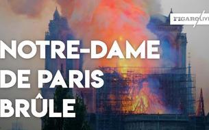 Les images du début de l'incendie à Notre-Dame de Paris