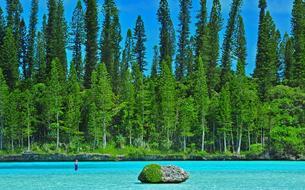 Nouvelle-Calédonie : Paradis et pins bénis