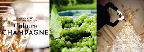 Culture Champagne : le beau livre d'un vin extravagant !