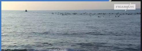 G7 de Biarritz : 350 surfeurs se jettent à l'eau pour défendre les océans