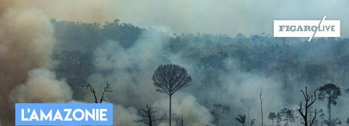 La forêt amazonienne peut-elle partir en fumée ?