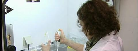 Les résultats encourageants d'un vaccin curatif contre le sida