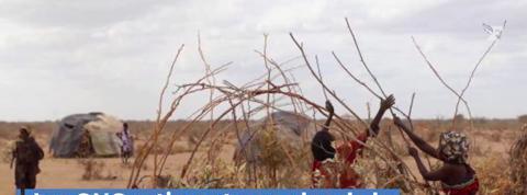 En Somalie, la sécheresse tue plus de 100 personnes en 48h