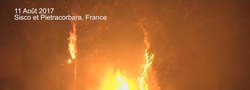 Incendie en Haute-Corse : 1500 hectares parcourus, 700 personnes évacuées
