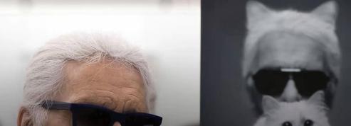 La vie de star de Choupette Lagerfeld