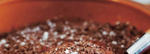 Mousse gourmande au chocolat