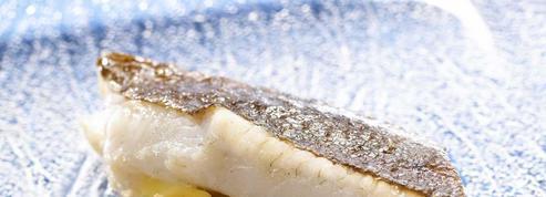 Filet de turbot au camembert