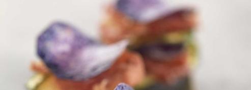 Mille-feuille de Vitelotte, courgette et coppa