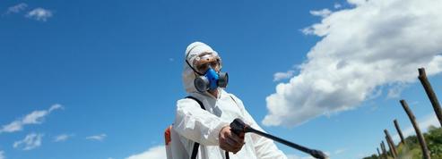 Polluants chimiques : les chercheurs s'inquiètent de leur utilisation massive