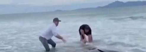 L'ex-All Black Ali Williams au secours d'une baleine échouée