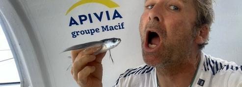 Coup de tonnerre sur la Transat Jacques Vabre