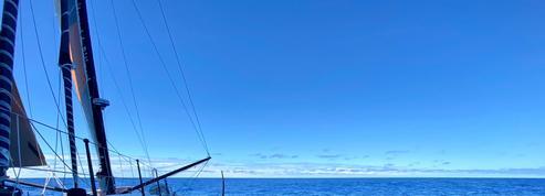 Vendée Globe : premier albatros pour Dalin et la tête de flotte au ralenti dans les griffes acérées de Sainte-Hélène