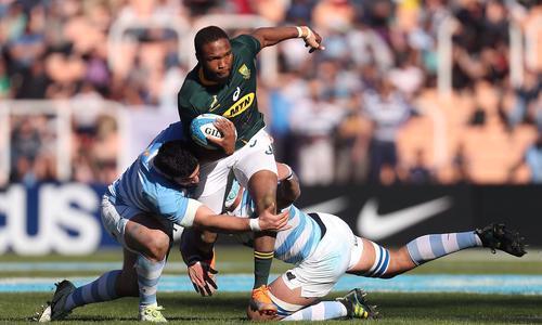 Afrique du Sud Argentine en direct - Saison 2019/2020 - Test Match - Rugby