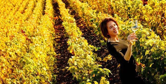 Dans ses vignes inondées de soleil, Anne Malassagne, propriétaire de la maison Lenoble, contemple les reflets dorés de son champagne.