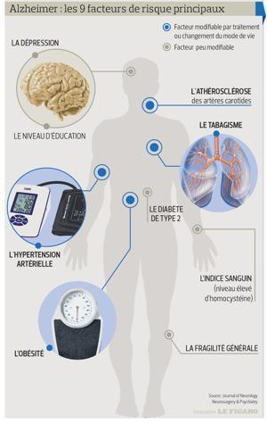 Les facteurs de risque de la maladie d'Alzheimer