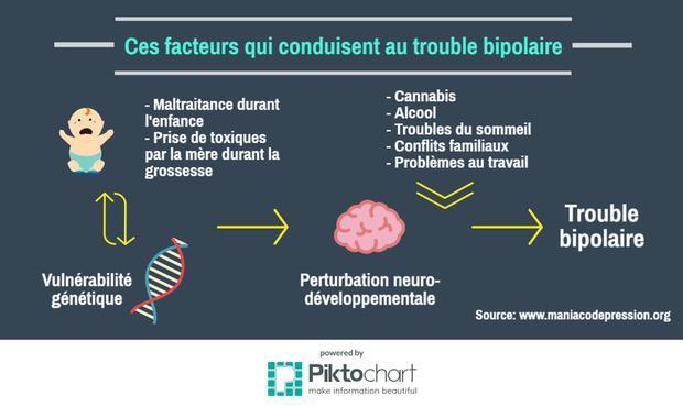 Ce schéma résume les facteurs menant aux troubles bipolaires
