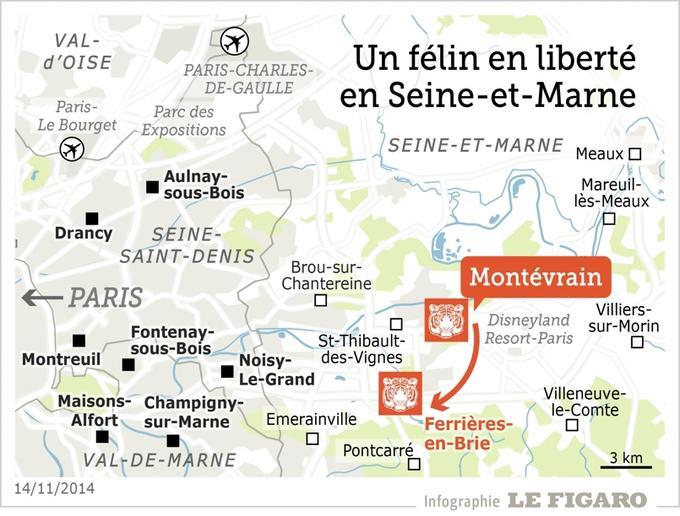 Le fauve recherché n'est pas un tigre, dispositif allégé en Seine-et-Marne