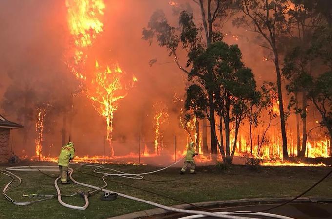 feu de forêt youtube