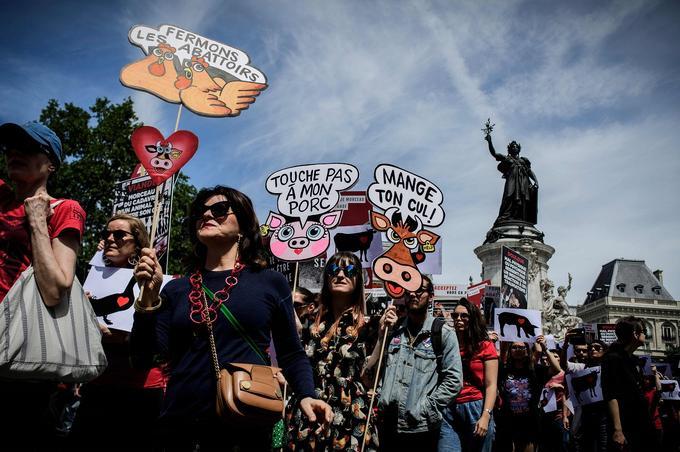 Ils sont des milliers de manifestants à Paris pour soutenir le droit animal