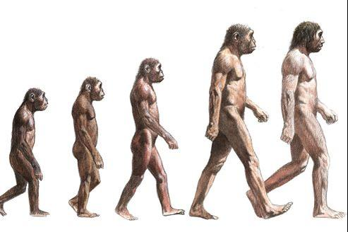 rencontres techniques évolution humaine