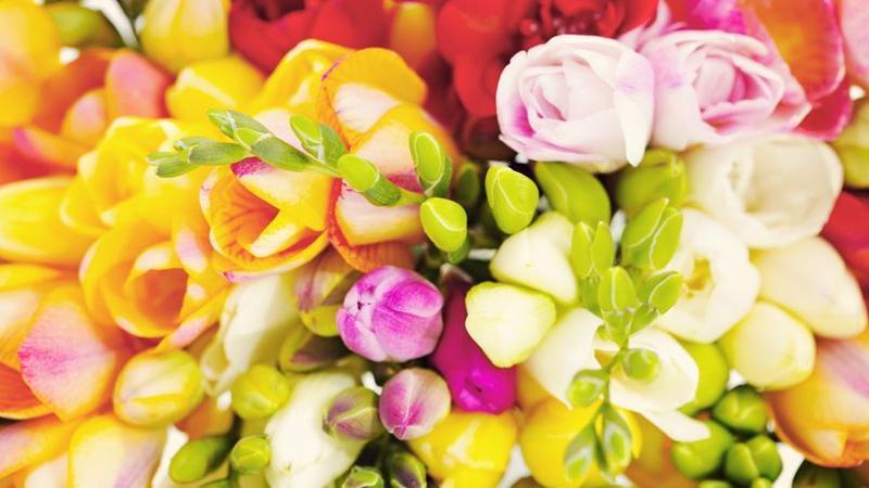 graines d 39 amour semez les fleurs de votre mariage. Black Bedroom Furniture Sets. Home Design Ideas
