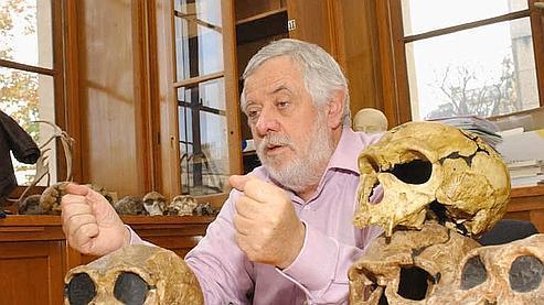 «Le nouvel australopithèque découvert est un para-Homo»