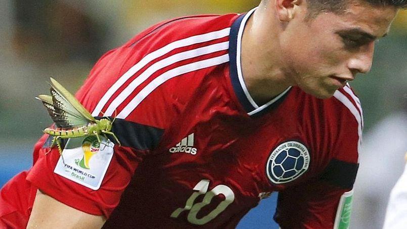 James Rodriguez s'apprête à tirer le penalty avec une sauterelle géante sur son bras.