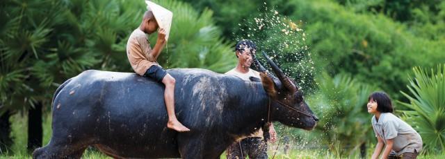 L'essentiel du Vietnam en 5 sites