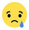 Le smiley triste, réaction de Mark Zuckerberg à la démission de Jan Koum