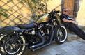 Les Harley-Davidson font leur show à l'Eurofestival