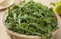 Roquette, des feuilles au délicieux goût poivré