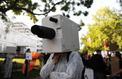 Loi renseignement : une première «boîte noire» activée pour surveiller les communications