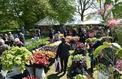 Les surprises végétales de Saint-Jean-de-Beauregard