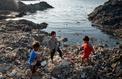 Indonésie, l'archipel du plastique