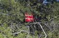 Noyades à Chalon-sur-Saône : l'enquête s'oriente vers un défaut de surveillance