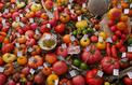 Tomates: l'incroyable collection d'un retraité picard