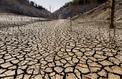 Les sécheresses réduisent la capture du carbone