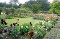 Jardin: comment créer un joli parterre fleuri