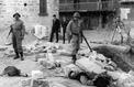 Max Clos à Chypre : une île divisée par la haine (1964)