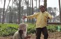 Yomeddine: mendiants et fraternels