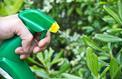 Au jardin, la révolution du «bio pour tous»