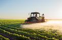 Vers une indemnisation des victimes de pesticides