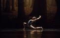 Ballets russes, les spectres résistent