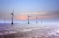 Les prix de l'éolien offshore en chute libre
