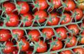 Un label «sans pesticide» pour aiguiller les consommateurs